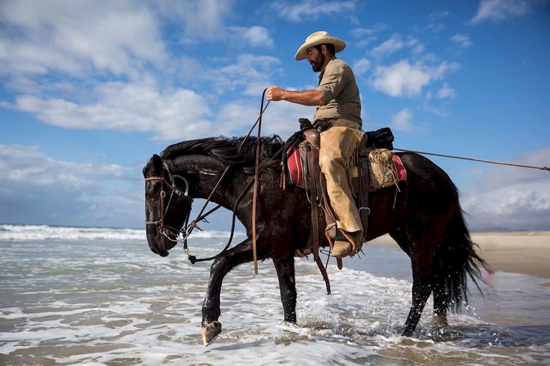 Reinigung von Pferdedecken